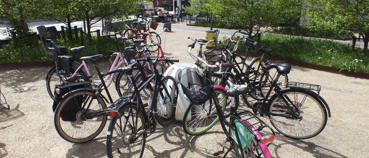 Parker cykler med Jello